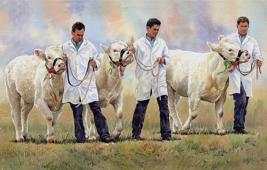 Best Of Show Painting - The Champions by Anthony Forster