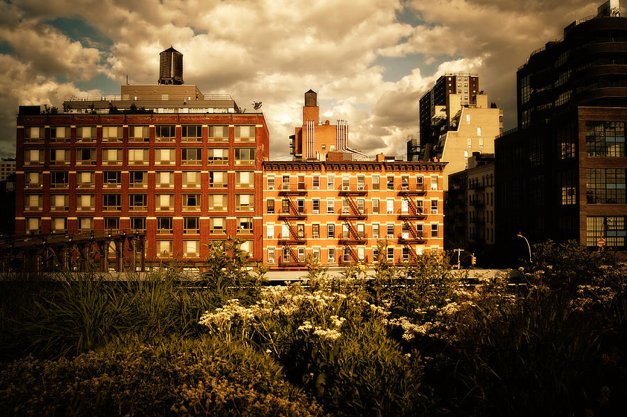 New York City Photograph - The Chelsea Skyline - High Line Park - New York City by Vivienne Gucwa