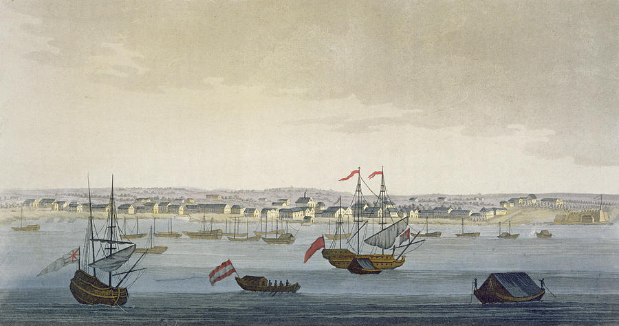 Port Drawing - The City Of Paramaribo by Paolo Fumagalli