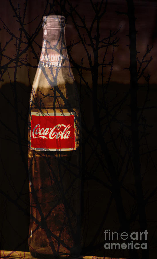 Coca Cola Photograph - The Classic by Robert Ball