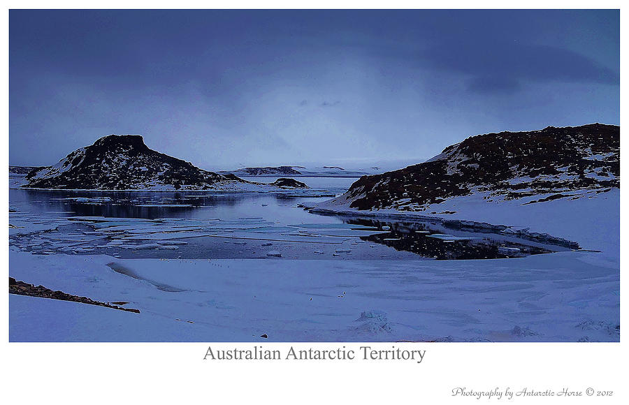 Antarctic Landscape Photograph - The Cold March by David Barringhaus