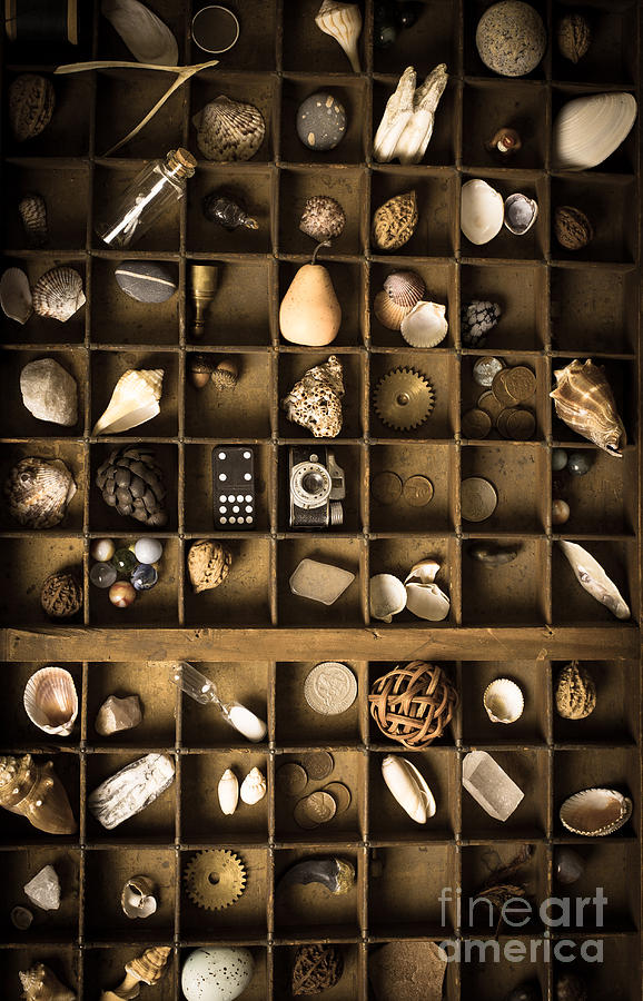 Marbles Photograph - The Collection by Edward Fielding