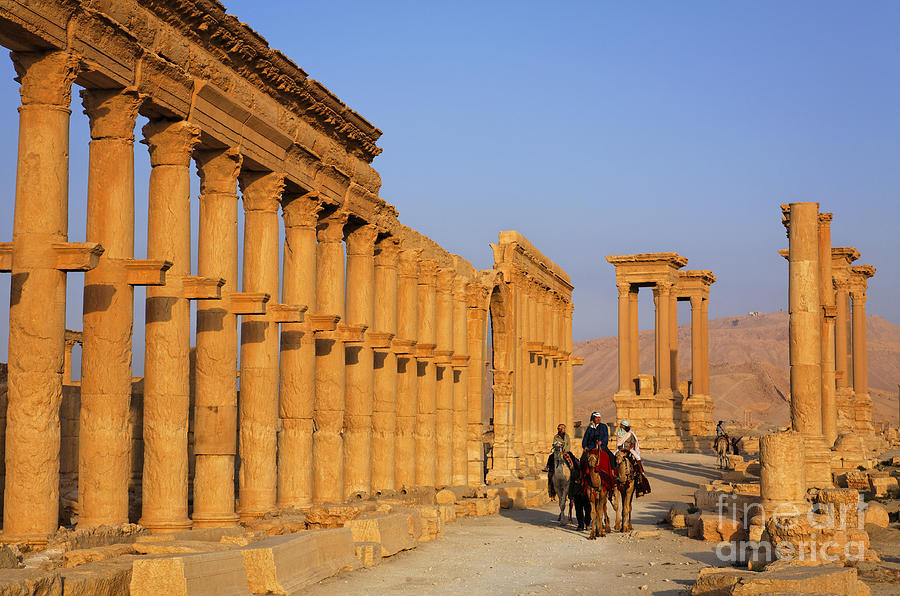 Palmyra Photograph - The Colonnaded Street Palmyra Syria by Robert Preston