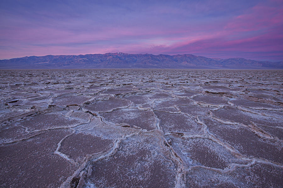 Death Valley Photograph - The Color Of Badwater by Tony Santo