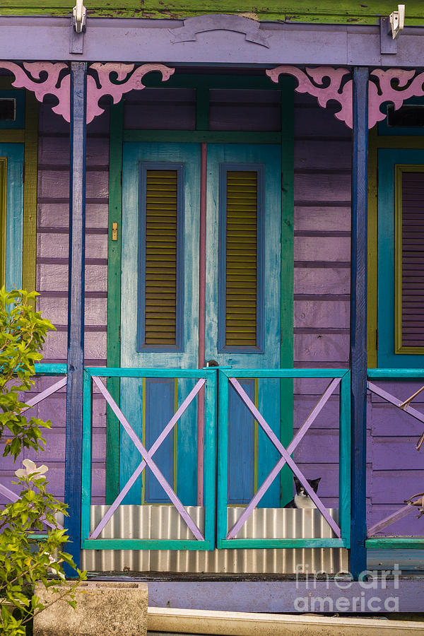 Bvi Photograph - The Color Purple by Rene Triay Photography