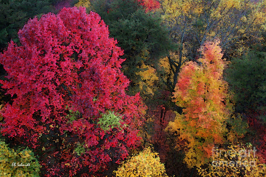 Autumn Digital Art - The Colors Of Fall by E B Schmidt