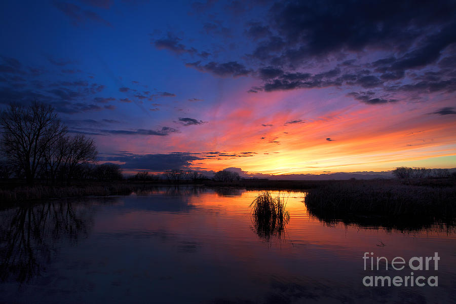 Sunsets Photograph - The Cool Of The Evening by Jim Garrison