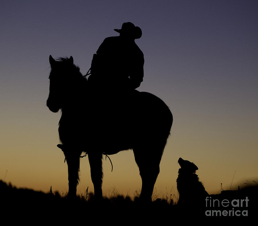 Cowboys Photograph - The Cowboy And His Dog by Carol Walker