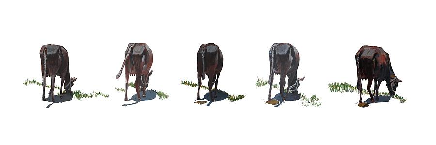 The Cows Painting - The Cows by Usha Shantharam