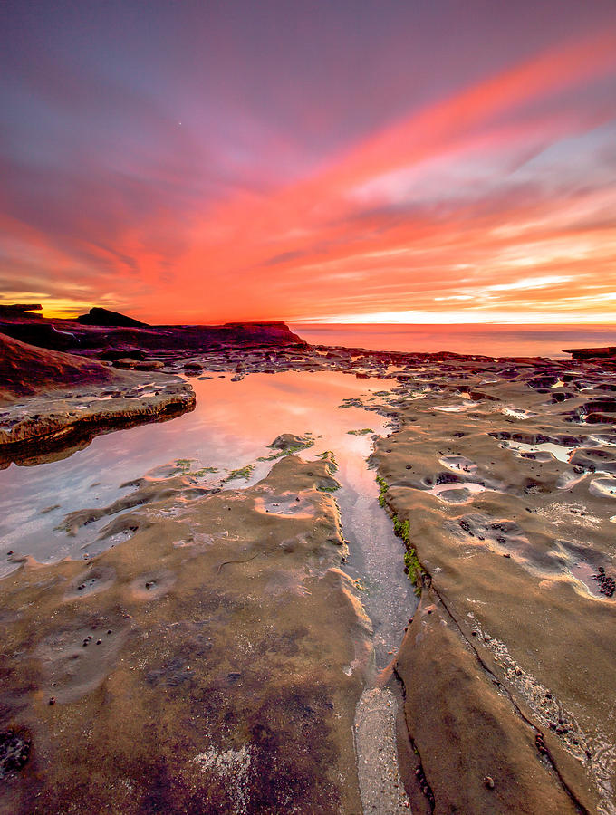 La Jolla Photograph - The Crack in the Rock by Robert  Aycock