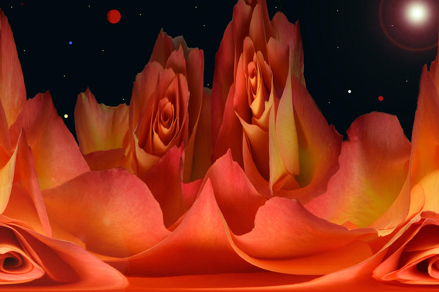 Fantasy Photograph - The Creation Of Rose. by Terence Davis