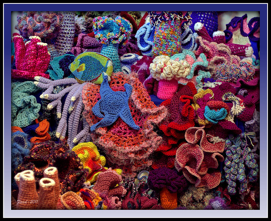 The Crochet Coral Reef Photograph By Farol Tomson