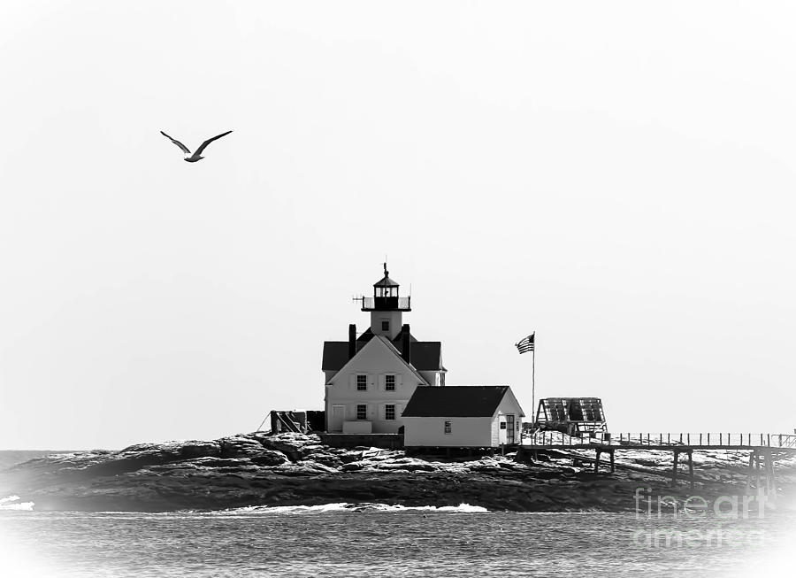 Lighthouse Photograph - The Cuckolds Lighthouse by Brenda Giasson