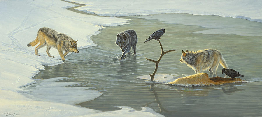 Wildlife Painting - The Cycle-wolves by Paul Krapf