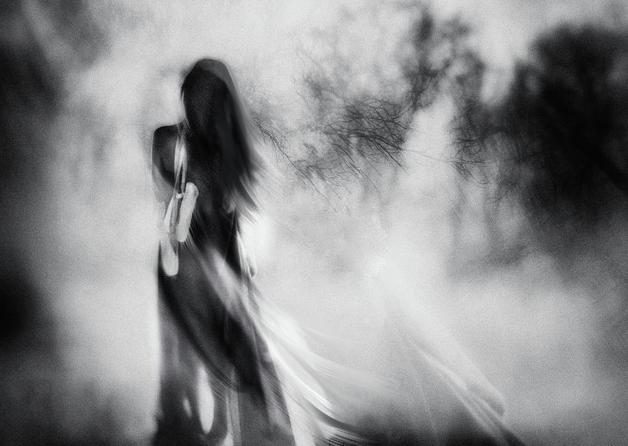 Mood Photograph - The Day I Stopped Dancing by Charlaine Gerber