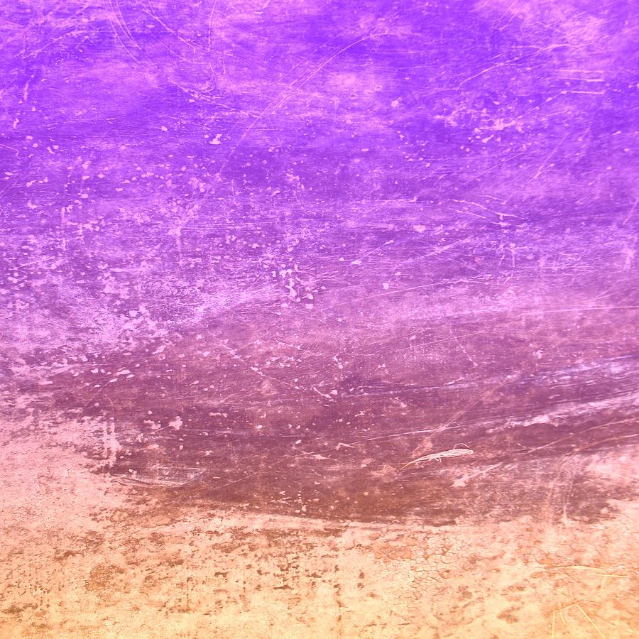 The Desert Digital Art