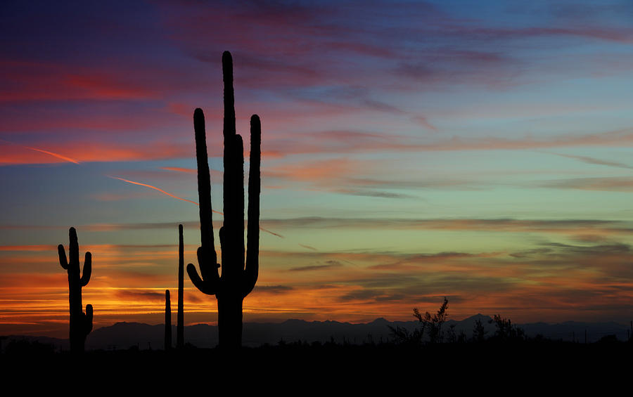 The Desert Southwest Skies Photograph By Saija Lehtonen