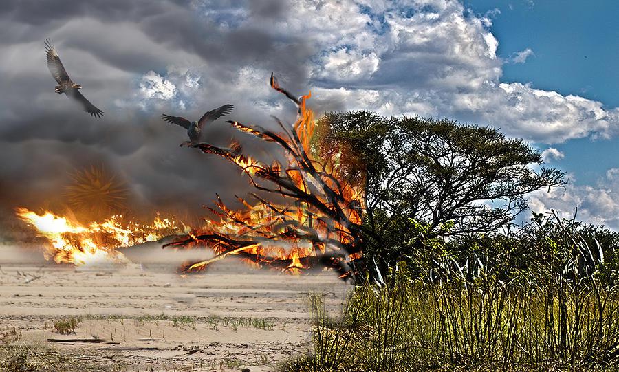 Destruction Photograph - The Destruction Of Our Land by Ronel Broderick