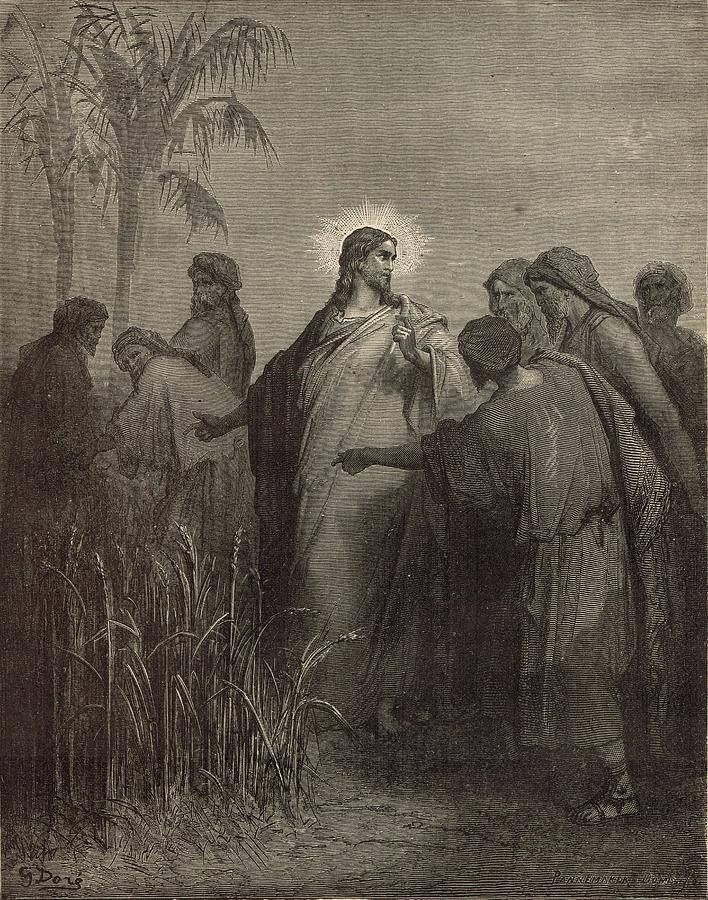 Biblical Painting - The Disciples Plucking Corn On The Sabbath by Antique Engravings