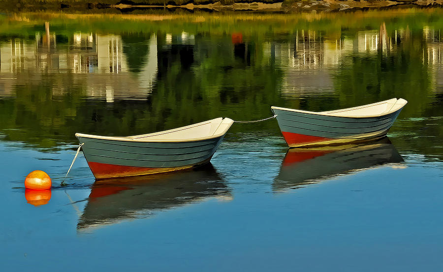 Dory Photograph - The Duo by Liz Mackney
