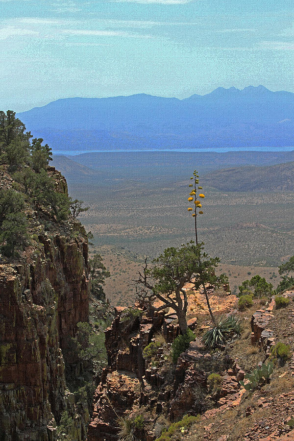 Sierra Ancha Mountains Photograph - The Edge Of Parker Canyon by Tom Janca