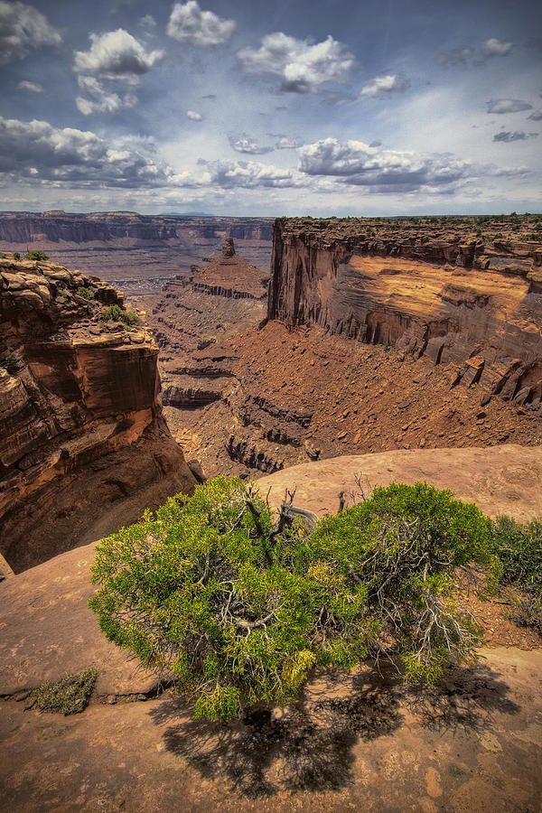 Canyon Photograph - The Edge by Ryan Heffron