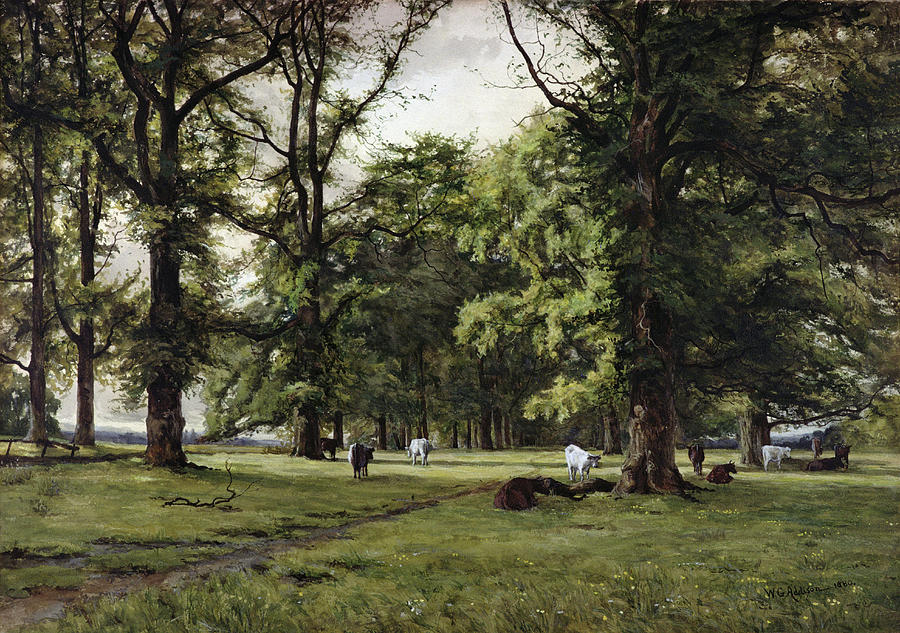 Elm Painting - The Elm Walk by William Grylls Addison