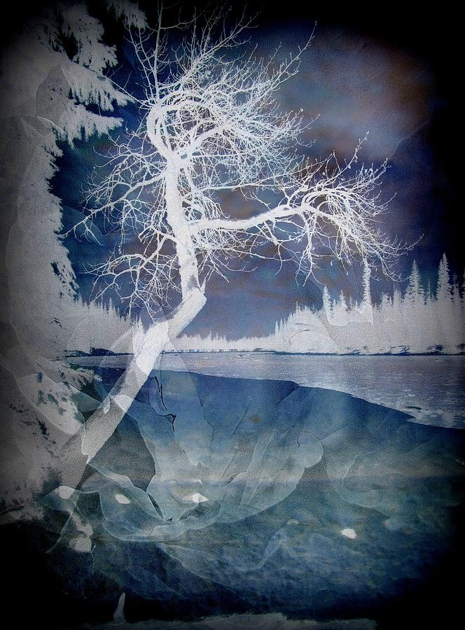 Winter Photograph - The Essential Pause by Shirley Sirois