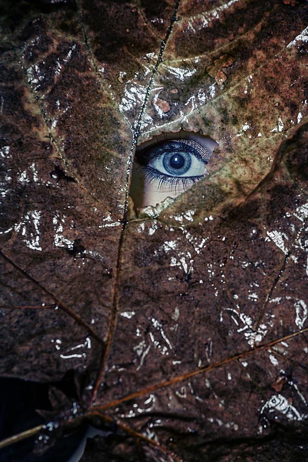 Female Photograph - The Eye by Joana Kruse