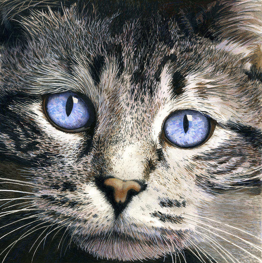 Cat Painting - The Eyes Have It by Ted Head