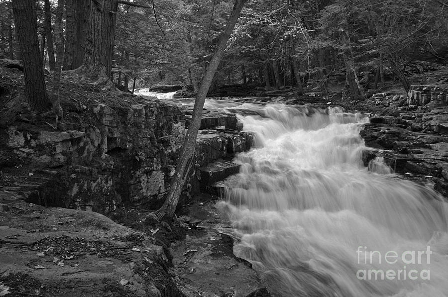 Waterfall Photograph - The Falls by David Rucker