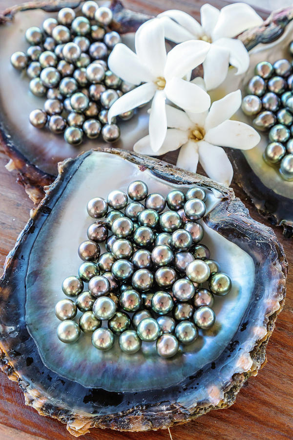 The Famous Black Pearls Of Tahiti Photograph by Matteo Colombo