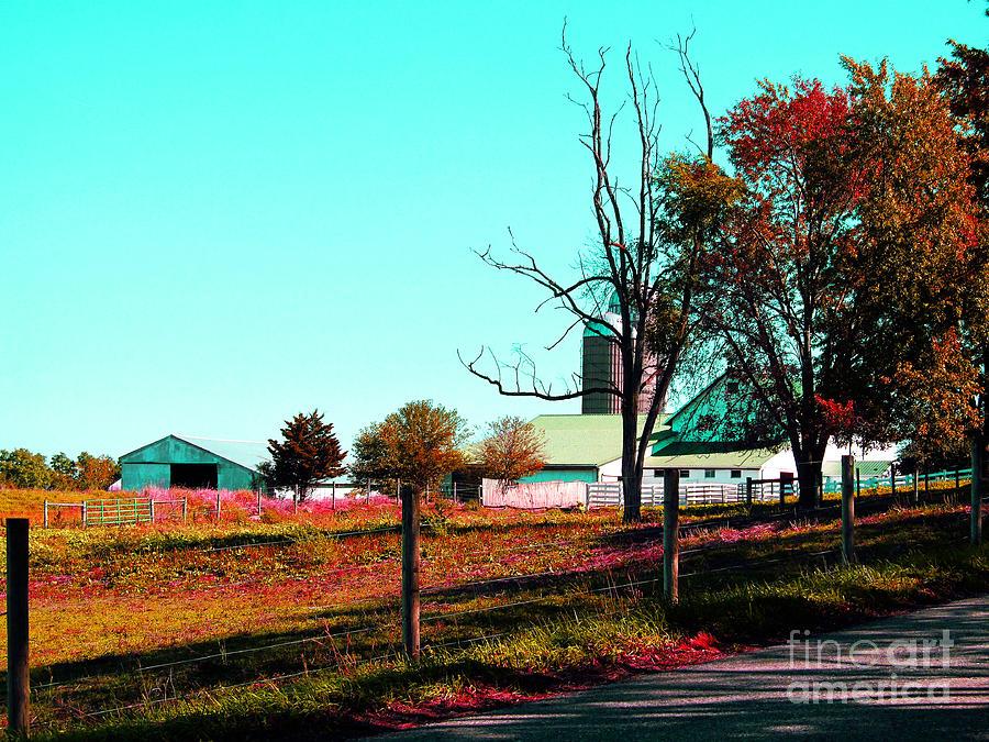 Barns Photograph - The Farmland In Autumn by Tina M Wenger