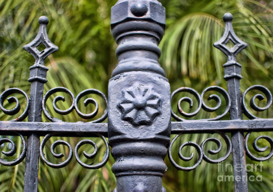 Iron Photograph - The Fence by Kathleen K Parker