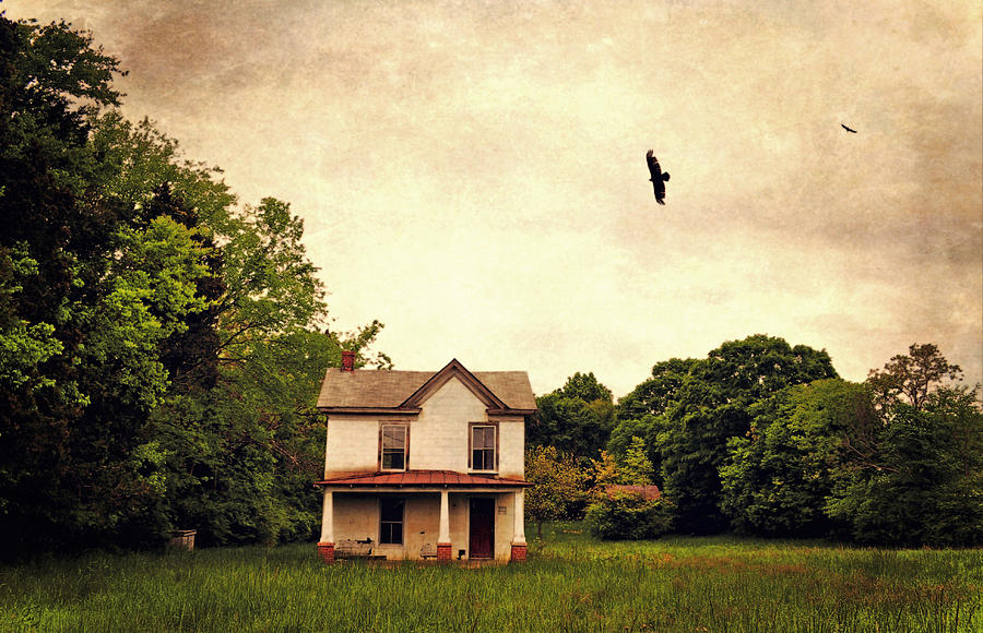 House Photograph - The Field by Emily Stauring
