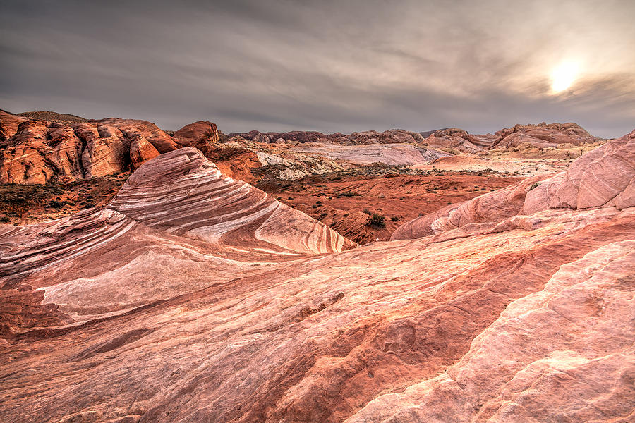 Canyon Photograph - The Fire Wave by Peter Tellone