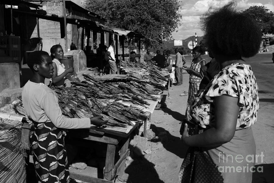 East Africa Photograph - The Fish Market by Aidan Moran