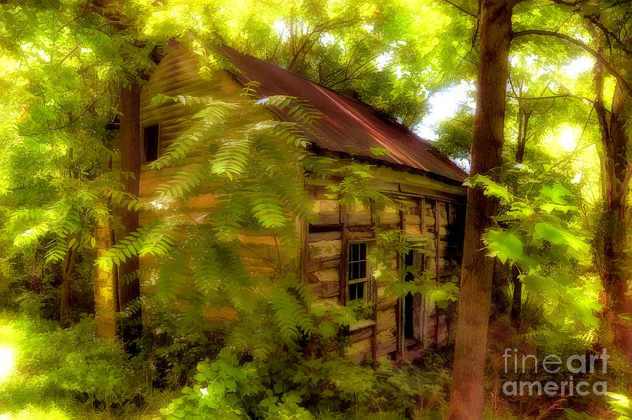 Cabin Photograph - The Fixer-upper by Lois Bryan