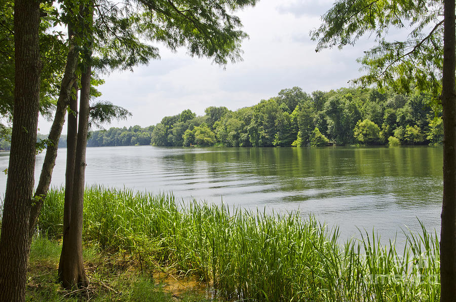 Bainbridge Photograph - The Flint River by Debra Johnson