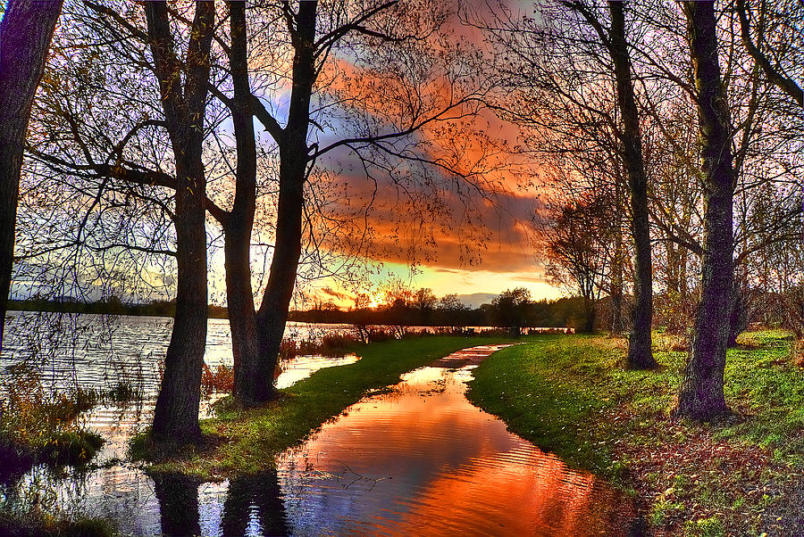 Cat-art Photograph - The Flooded Sunset Path by Kim Shatwell-Irishphotographer