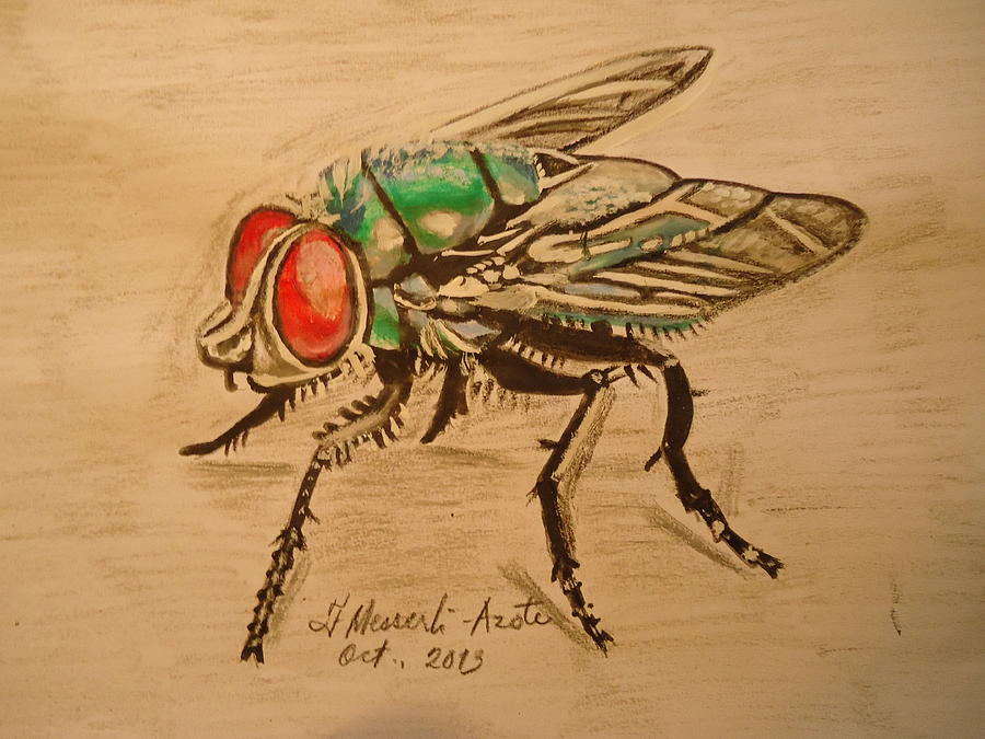 Nature Painting - The Fly by Fladelita Messerli-