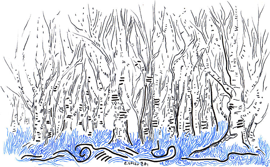 Atc Drawing - The Forest For The Trees An Aceo by Regina Valluzzi