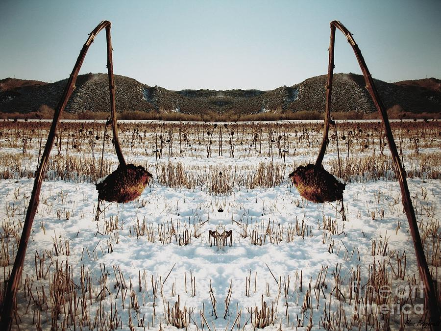 Winter Sceneries Photographs Photograph - The Forgotten Of Van Gogh - 9 by Flow Fitzgerald