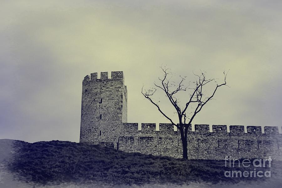 Fort Photograph - The Fortress by Marco Carr