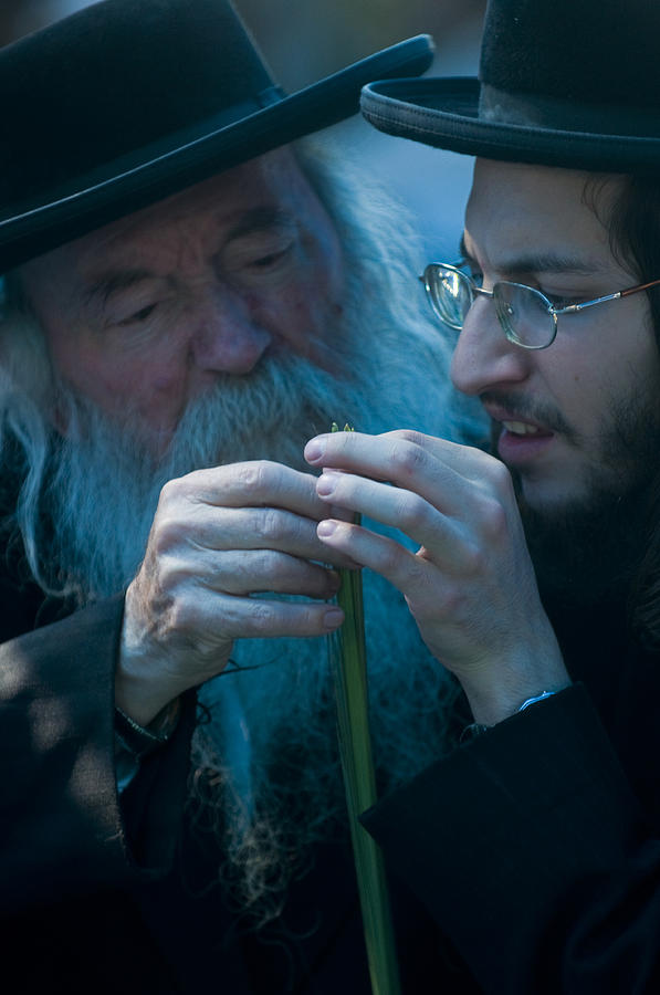 Jerusalem Photograph - The Four Species by Kobby Dagan