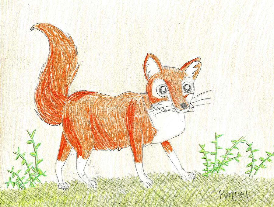 Fox Drawing - The Fox by Fred Hanna