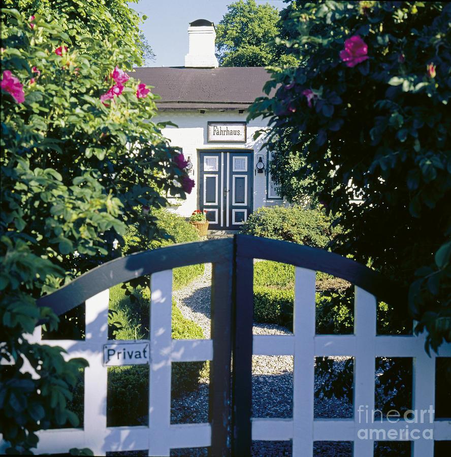 Gate Photograph - The Front Garden by Heiko Koehrer-Wagner