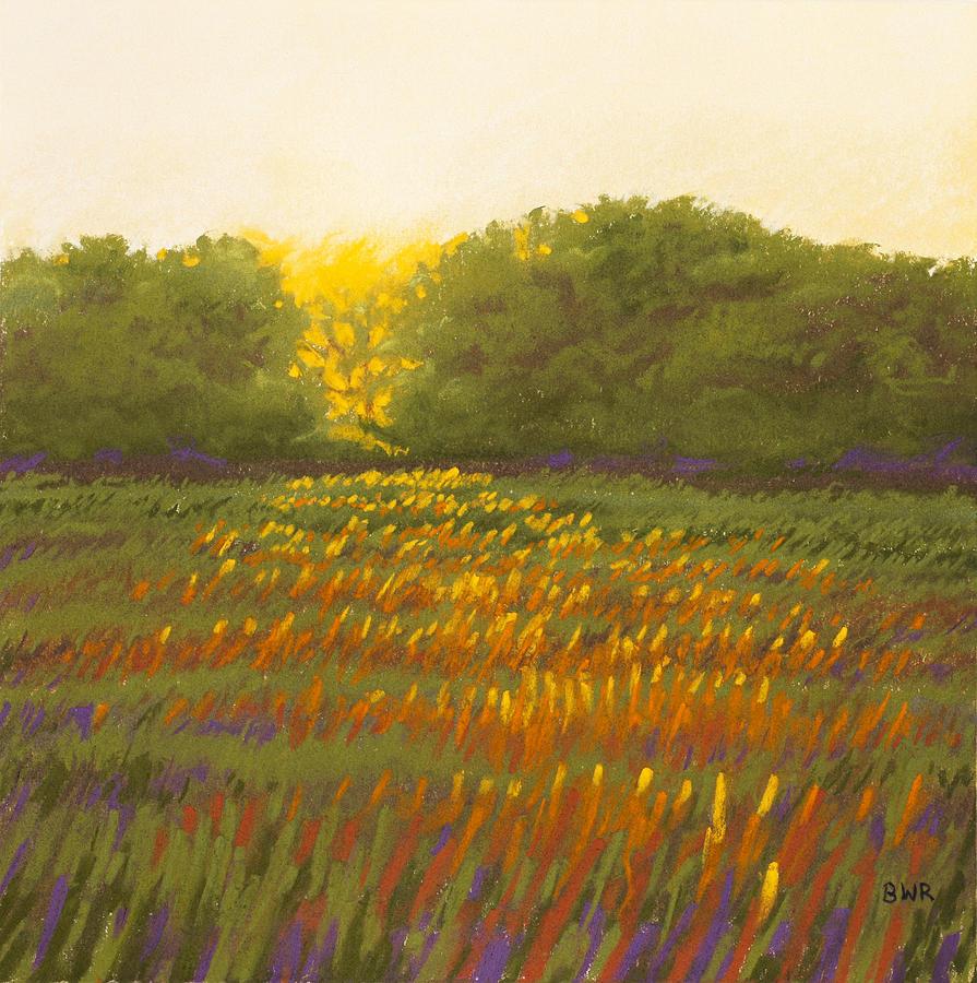 Sunset Pastel - The Gap by Bruce Richardson