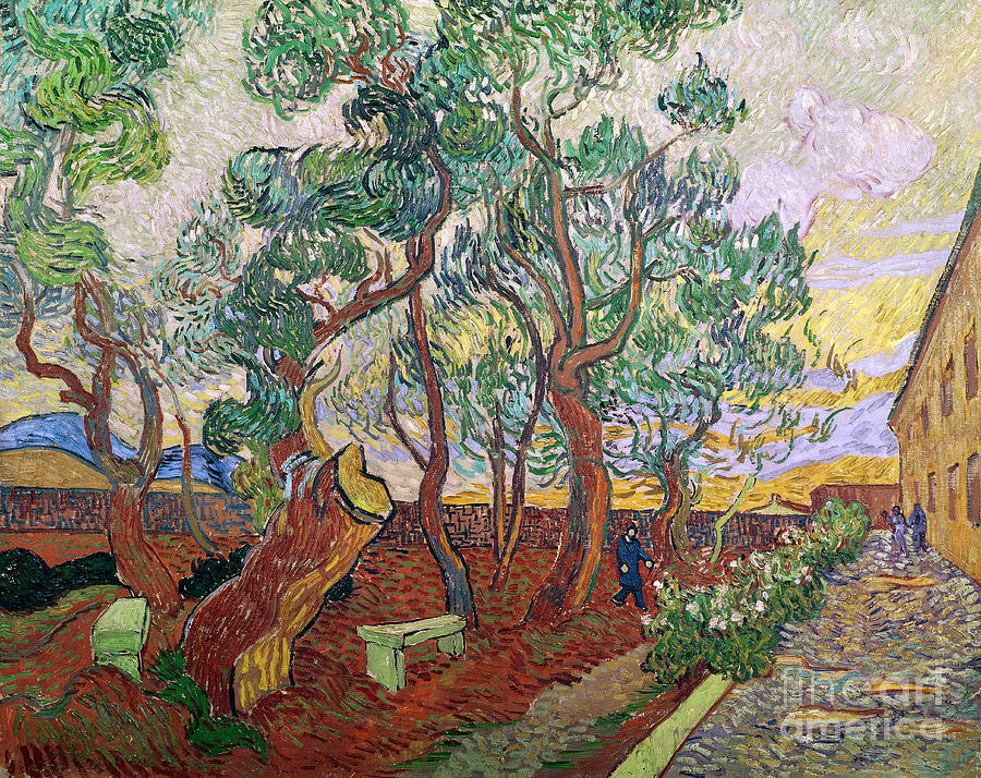 Tree Painting - The Garden Of St Pauls Hospital At St. Remy by Vincent Van Gogh