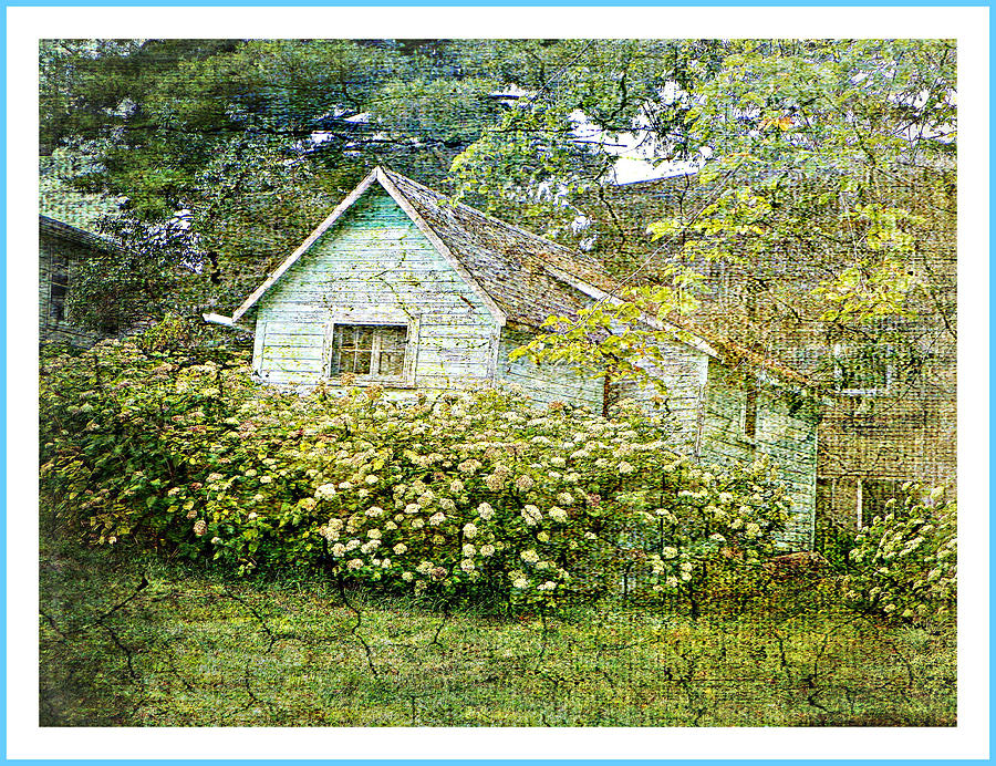 The Garden Shed Photograph by Dianne  Lacourciere